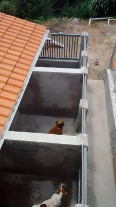 Canis construídos com doação do Programa A Hora do Faro