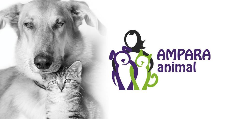 12-04-2012-ampara-animal-logo